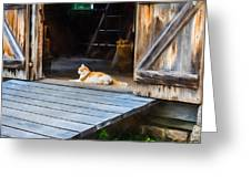Philipsburg Manor - Gristmill Greeter Greeting Card