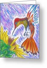 Phoenix Fire Hummingbird Greeting Card