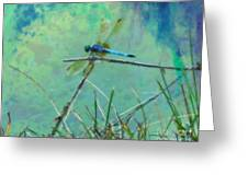 Photo Painted Dragonfly Greeting Card