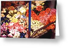 Flowers In Goa Greeting Card