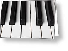 Piano Keys Close Up Greeting Card