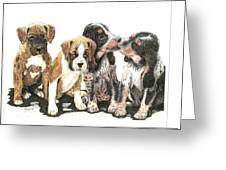Pick Of The Litter Greeting Card
