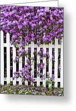 Picket Fence Rhododendron Greeting Card