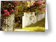 Picket Fence Roses Greeting Card