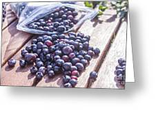 Picking Whortleberries Greeting Card