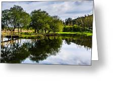 Picnic Area In The Marnel River IIi Greeting Card