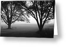 Picnic In The Fog Greeting Card