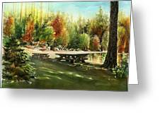 Picnick Tables Greeting Card