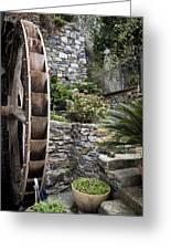 Pictueresque Waterwheel In Cinqueterre Garden Greeting Card