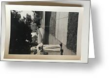 Picture Of Boy With Camera Greeting Card