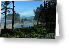 Picturesque Ruby Beach View Greeting Card