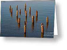 Pier Posts Greeting Card