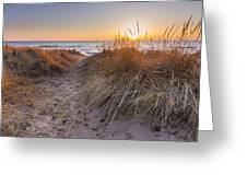 Pierport Beach Dunes Greeting Card