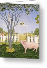 Pig And Cat Greeting Card