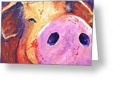 Pig On Purple I Greeting Card