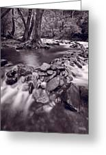 Pigeon Forge River Great Smoky Mountains Bw Greeting Card