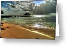 Pigeon Point Beach Tobago Greeting Card