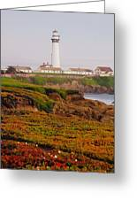 Pigeon Point Ca Greeting Card