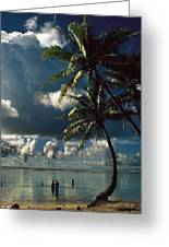 Pigeon Point On Tobago Greeting Card