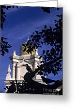 Pigeons Silhouetted Greeting Card