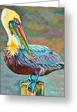 Pile High Pelican Greeting Card