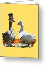 Pilgrim Ducks Greeting Card