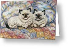 Pillow Mates Greeting Card
