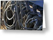 Pin Rail And Rope Greeting Card