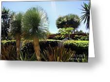 Pinball Plants, Long-pin Plants Greeting Card