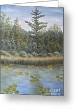 Pine And Lily Pads 2  Greeting Card