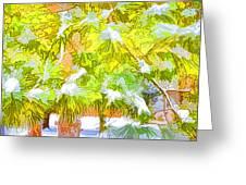 Pine Branch Under Snow Greeting Card