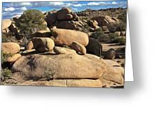 Pine City Boulders Greeting Card