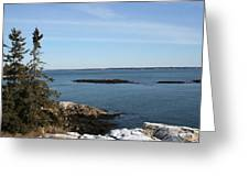 Pine Coast Greeting Card