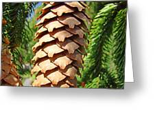 Pine Cone Art Prints Pine Tree Artwork Baslee Troutman Greeting Card