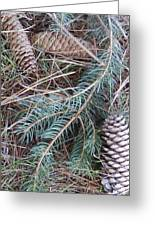 Pine Cone Brush Greeting Card