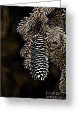 Pine Cone Bw Greeting Card
