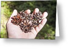 Pine Cones Hand Greeting Card