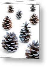 Pine Cones Looking Like Christmas Trees On White Snowy Backgroun Greeting Card