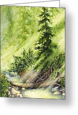 Pine Creek Greeting Card
