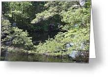 Pine Lake 391 Greeting Card