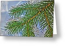 Pine Needles In The Rain Greeting Card