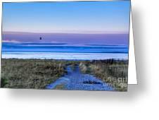 Pine Point Morning Greeting Card