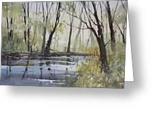 Pine River Reflections Greeting Card by Ryan Radke