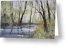 Pine River Reflections Greeting Card