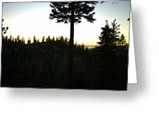 Pine Tree Hill Sunset Greeting Card