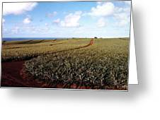 Pineapple Fields Greeting Card