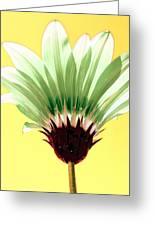 Pineapple Flower Greeting Card
