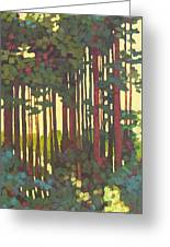 Pines Of Nisqually Greeting Card