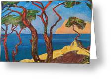 Pines Of The Silver Beach Greeting Card
