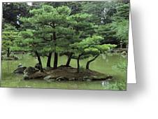 Pines On Island In The Gardens Greeting Card